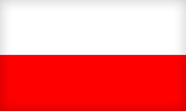 święto Polskiej Flagi Szkoła Podstawowa Specjalna Nr 41 W